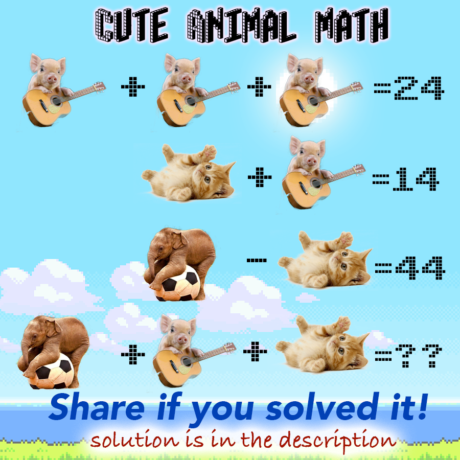 Cute Animal Math